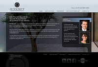 Picture of website